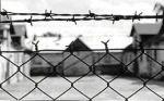 HelpTraduzioni: eccidio nazista, Giornata della Memoria